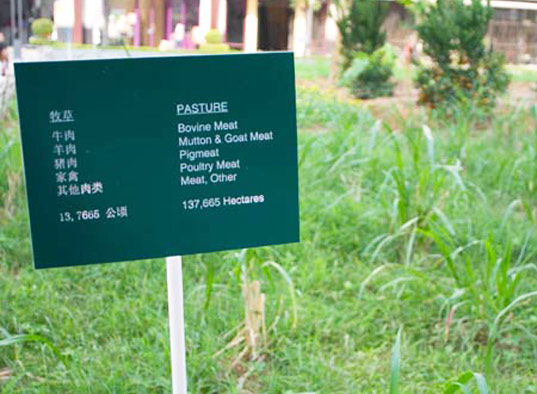 sustainable design, green design, shenzen, urban farm, hong kong, bi-city biennale of urbanism/architecture, landgrab city