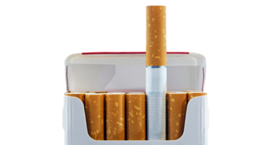 sustainable design, green design, flower sprouting cigarette filters, greenbutts, cigarettes, filter, green products