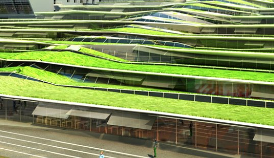 Green Roof Natural Daylight France Off Architecture High School Roofed