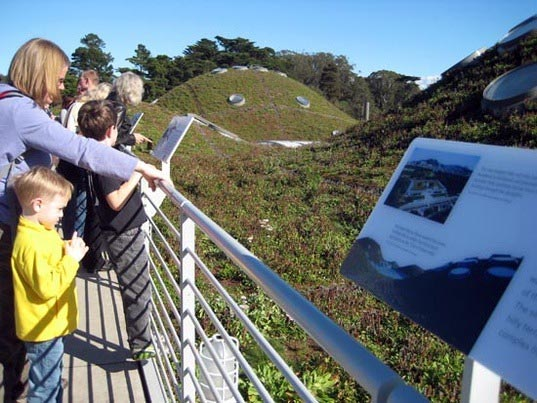 sustainable design, green design, green roof, green building, sustainable architecture, urban heat island effect, california academy of sciences