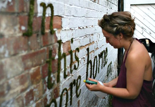 Anna Garforth, moss typography, moss street art. moss street poetry, London eco art, London environmental art, Mossenger, Sporeborne, eco illustration, green typography, eco art, urban greening