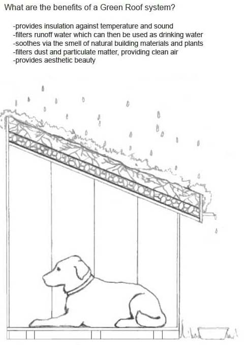 Dog house plans with flat roof for Pet friendly house plans