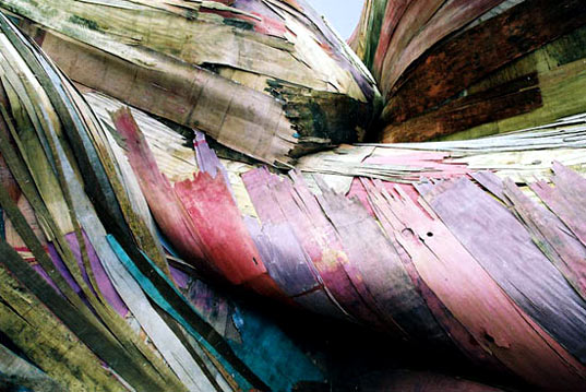 recycled plywood, recycled scrap wood, recycled tapumes, tapumes, henrique olivera, sao paulo brazil eco art, eco art latin american, swirling eco art, environmental art, recycled art, reused art