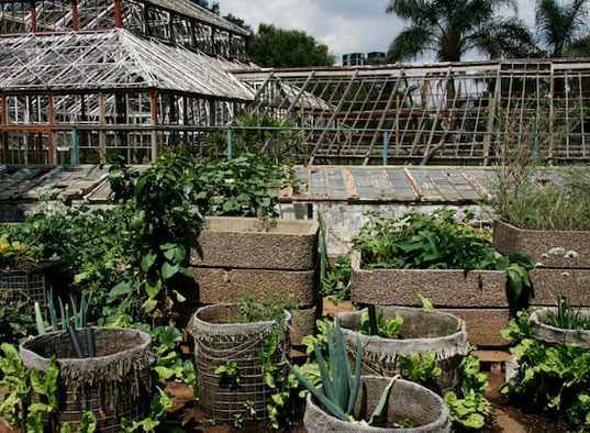 The Global Oneness Project, The GreenHouse Project Johannesburg, sustainable living Johannesburg, sustainable living South Africa, The Berkana Institute South Africa, recycling South Africa, renewable energy South Africa, renewable energy Johannesburg, recycling Johannesburg