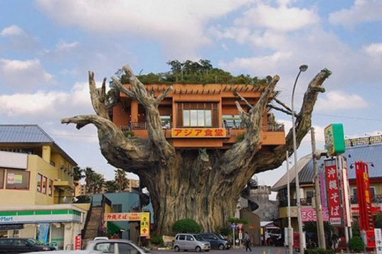 Charming Crazy Tree Houses Home Design