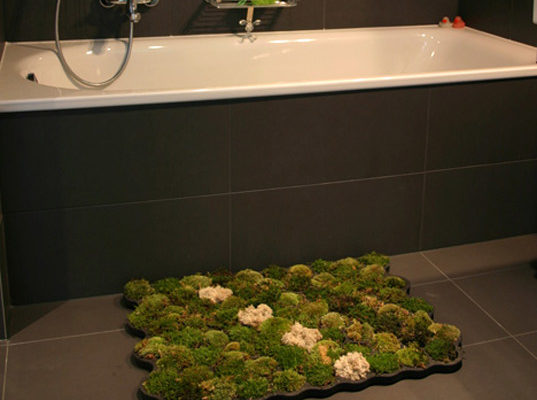 Living Moss Carpet Adds A Touch Of