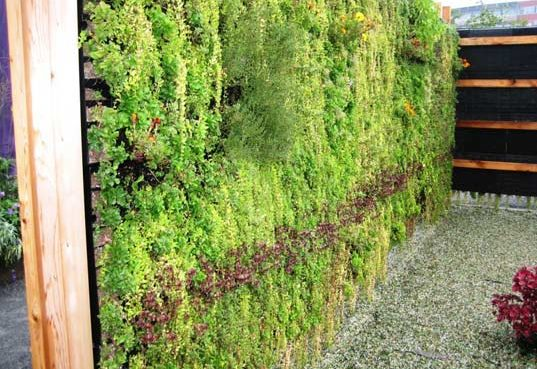 Elt Easy Green Living Wall Panel Systems Modular