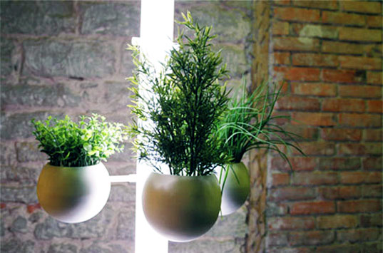 sustainable design, green gardening, apartment gardening, green indoors, your way to coway, plant, stand