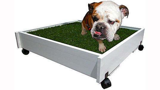 sustainable design, green design, top ten silliest eco gadgets, products, greenwashing, pet-a-potty