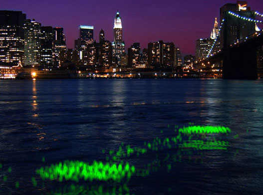 River Glow, The Living's Water Pollution Monitor, The Living Architecture, David Benjamin and Soo-in Yang, Metropolis Next Generation Contest, LED floating lights, Pollution monitering LED lights, Water Pollution Urban Art Project