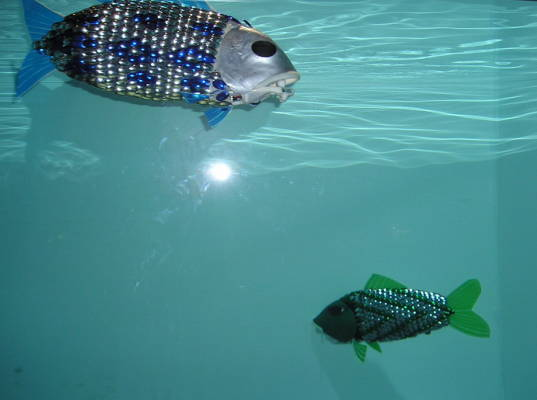 Monitoring Water Pollution With Robotic Fish Inhabitat