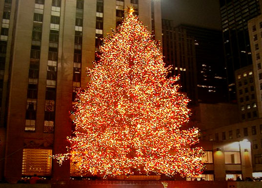nyc rockefeller center christmas tree goes green design