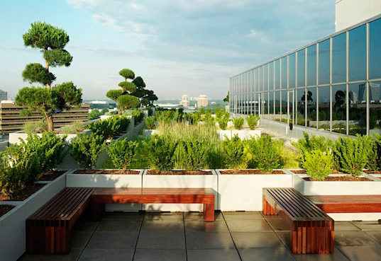 Green Roofs Are Changing The Way Architects Design Buildings