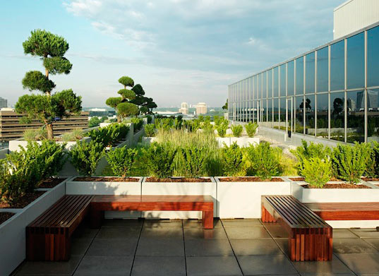 sustainable design, green design, green roof, green building, sustainable  architecture, urban