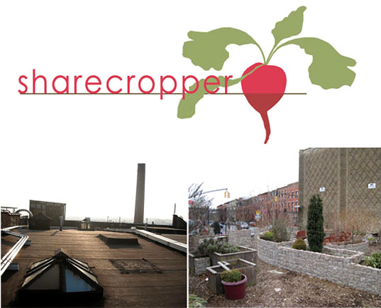 sustainable agriculture, Sharecropper, Leah Gauthier, environmental art NYC, eco art NYC, micro-farming, microfarming, heirloom seeds, organic gardening, seed sharing urban greening, seed saving, public art NYC