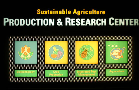 MICKEY MOUSE SUSTAINABLE FARMING?, EPCOT Center Sustainable Farming Initiative, Living With the Land, Mickey Mouse shaped pumpkins, genetic engineering, Mickey pumpkins, genetically modified crops, hydroponics, Walt Disney World Farming, EPCOT farming, EPCOT agriculture