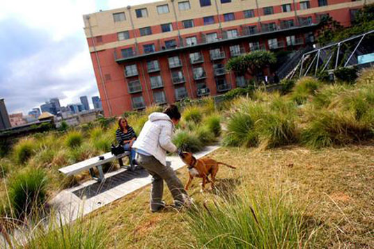 SYDNEY PLANS TO GREEN THE CITY'S ROOFS