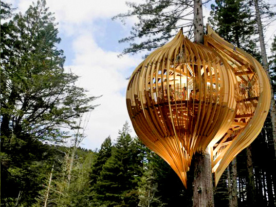 yellow tree house yellow pages treehouse pacific environments architects ltd tree house