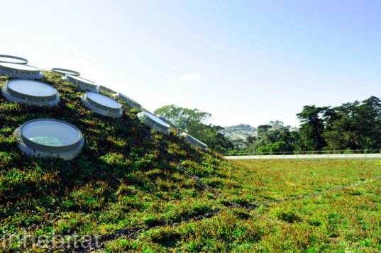 green roof, rana creek, living wall, CABoom, paul kephart, freya bardell, sustainable design, green