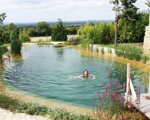 Natural Swimming Pools Let You Beat the Heat, and Ditch the ...