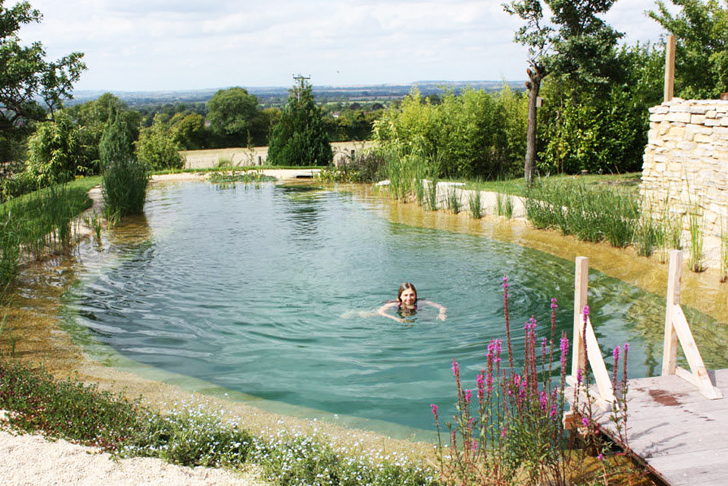 Natural Swimming Pools Let You Beat the Heat, and Ditch the Chemicals
