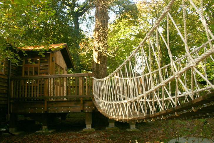 New Forest Study Centre A Treehouse Retreat For