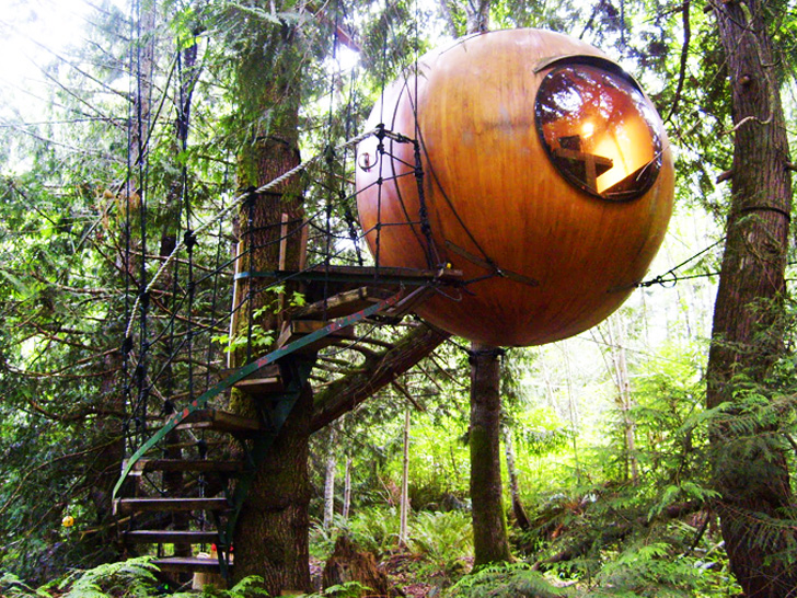 Superb Tree House Download Free Architecture Designs Viewormadebymaigaardcom