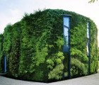 Gorgeous Green House is Wrapped in a Lush Vertical Garden in Belgium