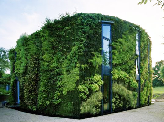 Gorgeous Green House Is Wrapped In A Lush Vertical Garden