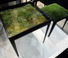 Moss Table Adds a Micro-Landscape to Your Living Room