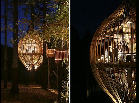 treehouse, treehouse restaurnat, yellow treehouse restaurant, yellow pages, sustainable grown wood, sustainably harvested wood, local materials, natural lighting, daylighting, green design, eco design, sustainable building
