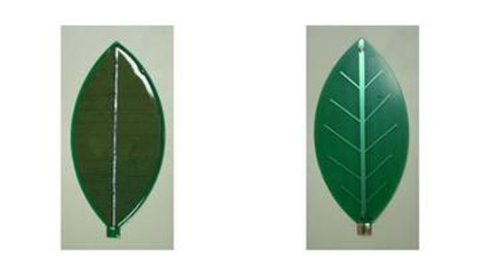 Greendix Develops First Leaf Shaped Crystalline Silicon