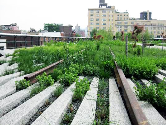 high line, new york city, urban green space, parks, urban design, sustainable design, landscape architecture, diller scofidio + renfro, james corner field operations