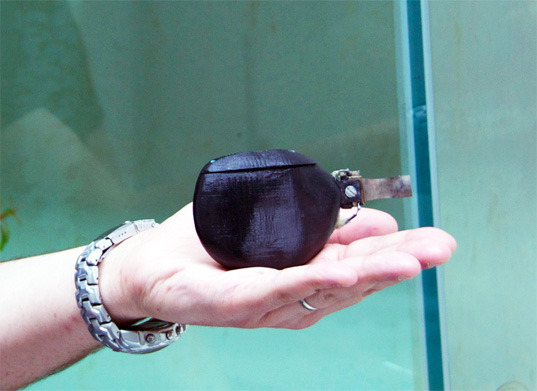 robot fish, porfiri, nyu, oil spill, biomimicry, sustainable  design, green design, green gadget