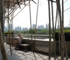 Stunning Bamboo Forest Continues to Grow Atop Met Museum