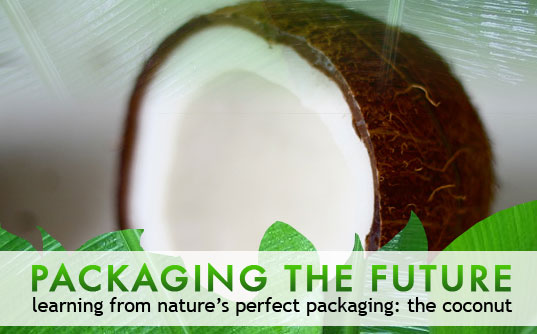 green packaging, eco packaging, environmental packaging, packaging design, natural design, biomimetic, biosustainable design, green design, eco design, coconut product packaging, green materials, eco friendly materials, natural packaging, biomimicry