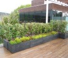 Movable Modular Planters and Green Walls by Maximize Design