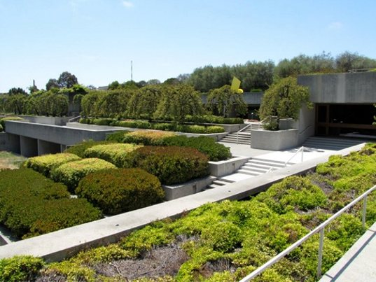 Oakland 39 s renovated museum is a green roofed urban gem for Oakland landscape design