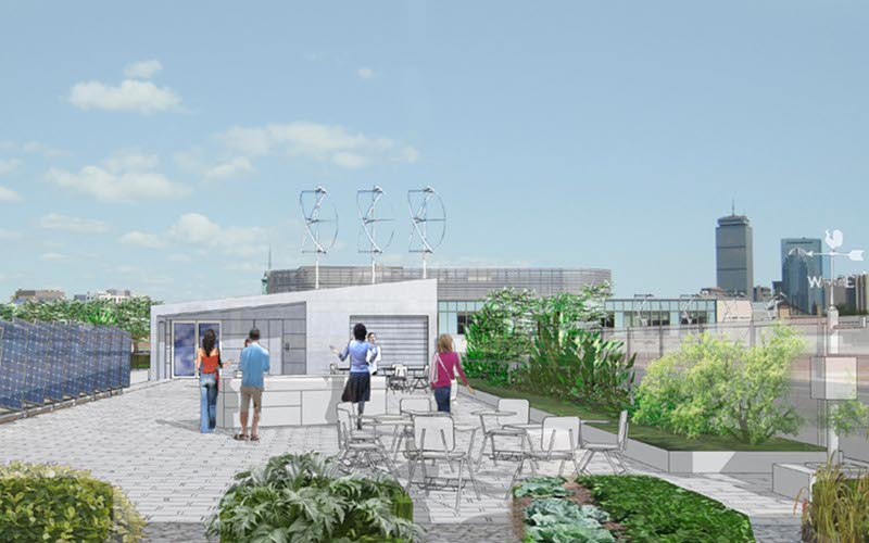 boston latin school, sustainable roof, green roof, studio g architects, living laboratory, boston