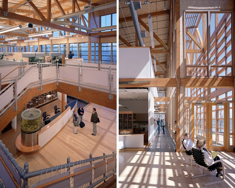 chesapeake bay foundation, merrill environmental center, green building, sustainable architecture, leed platinum