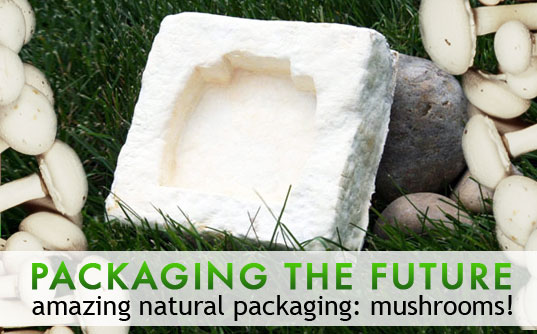 sustainable design, green design, mycobond, green packaging, packaging the future, mushroom packaging, green materials, sustainable packaging