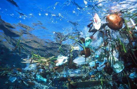 plastic bags, plastics, american somoa, california, garbage patch, waste and recycling, oceans, marine life, sustainable design