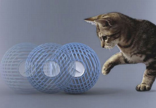 kinetic energy, cat powered humidifier, kitten, cat, green pets, green design, green products