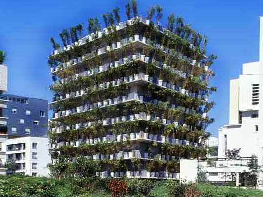 Let S Stay Creative Green Wall And Facade Ideas