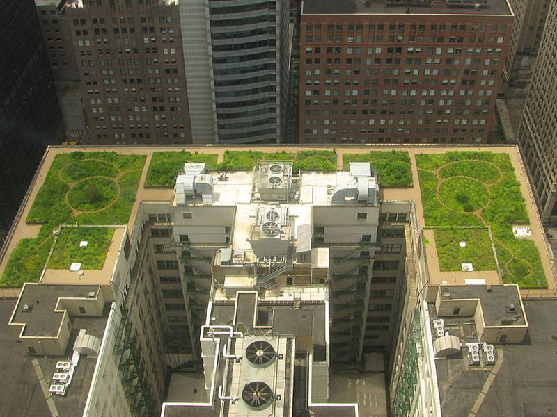 rainwater collection, green roof, how do green roofs work, how do green roofs help, new york green roof, new york green sidewalks, new york green spaces, michael bloomberg green initiatives, new york green initiatives, planyc