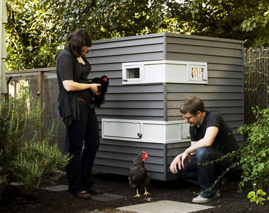 Home farming, chicken coops, humane chicken coops, green chicken coops, diy chicken coops, raising chickens, backyard chickens, hens, hen coops, Mitchell Snyder, Shelley Martin, Portland, yard chickens, rooftop gardens, living roof, organic farmic, organic eggs