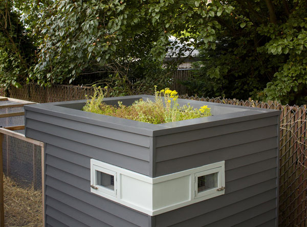 Chic Modern Chicken Coop Grows A Green Roof