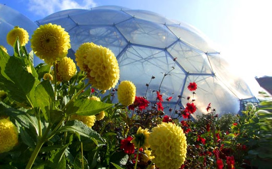 eden project, greenhouse, biome, biosphere, cornwall, united kingdom, green design, eco design, eco architecture, green architecture, Tim Smit ,Nicholas Grimshaw, plants, flowers, biodome, garden, gardening