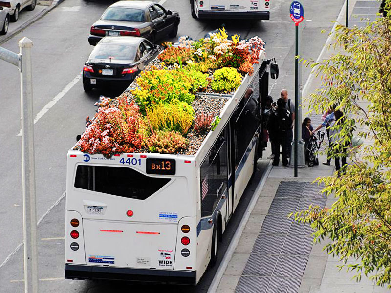 sustainable design, green design, green transportation, bus planter, green roofed bus, bus roots, marco castro cosio, gardening