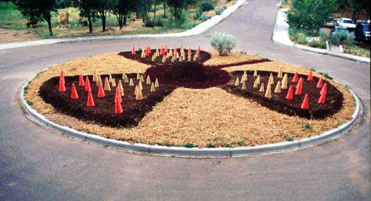 sustainable design, green design, art garden, monsoon arsenal, Center for Contemporary Arts, santa fe, Jacques Abelman, Aysha Massell, Nik Bertulis